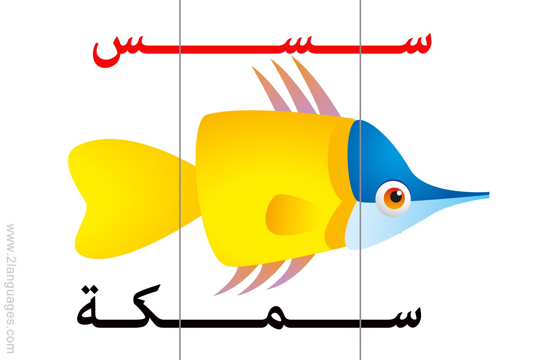 Arabic letters 3 Parts
